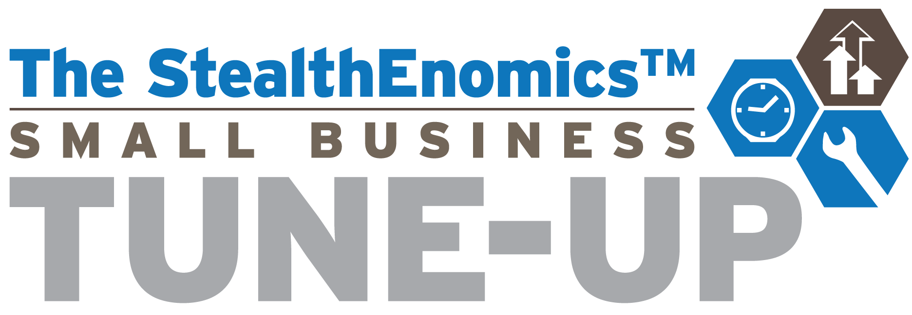 The StealthEnomics Small Business Tune-Up